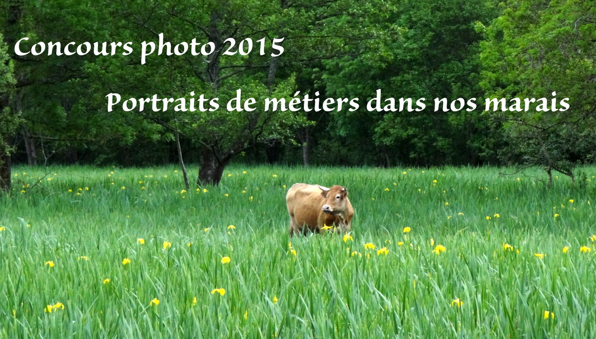 AnnonceConcours2015.JPG